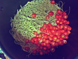Whole wheat cappellini and cherry tomatoes